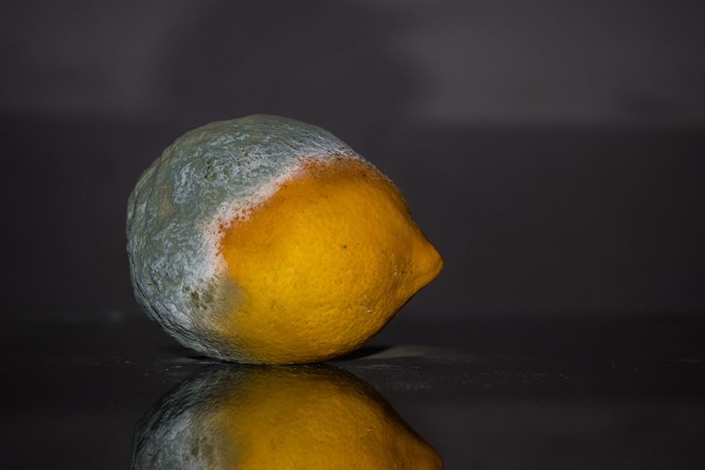 Limón pudriéndose